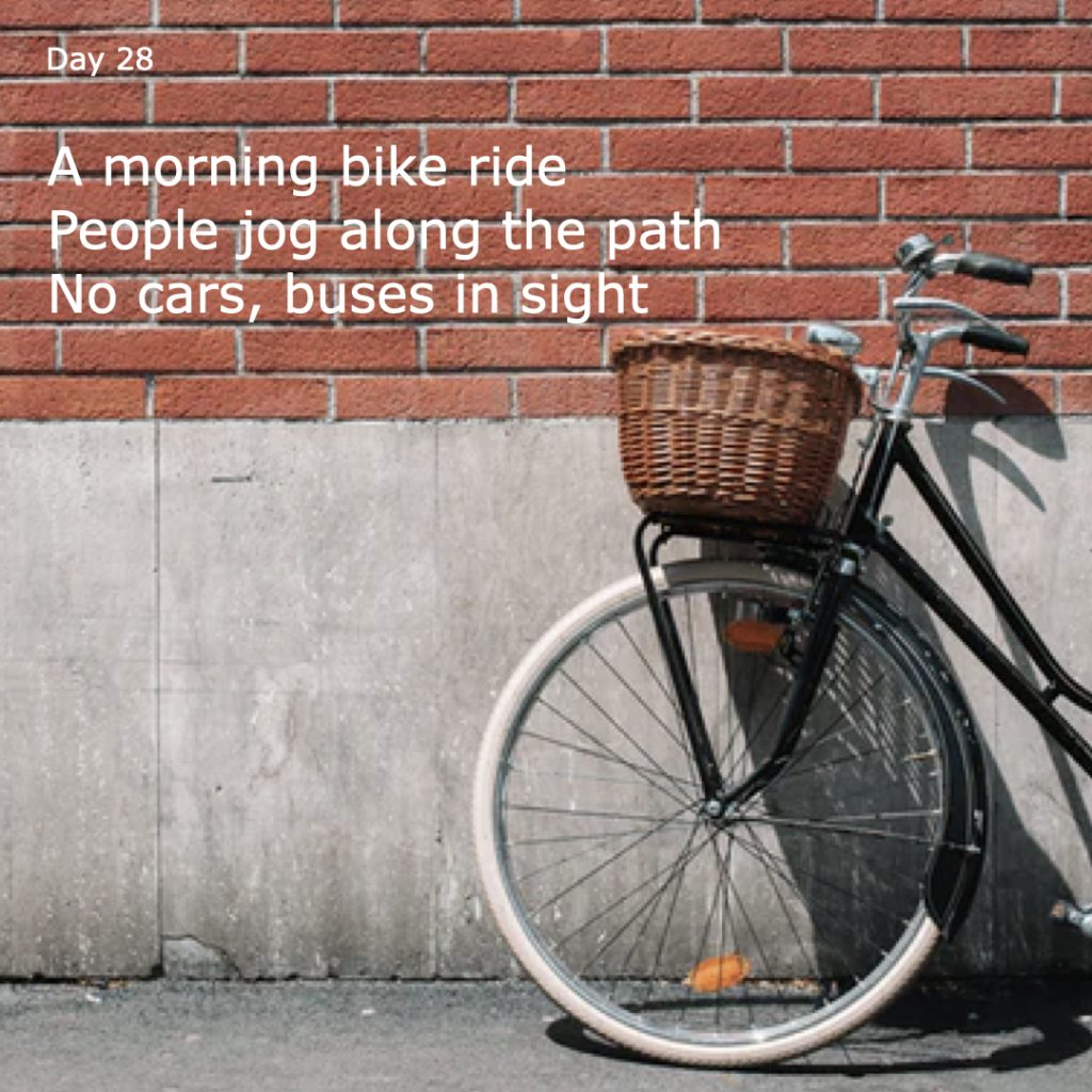 Haiku day 28