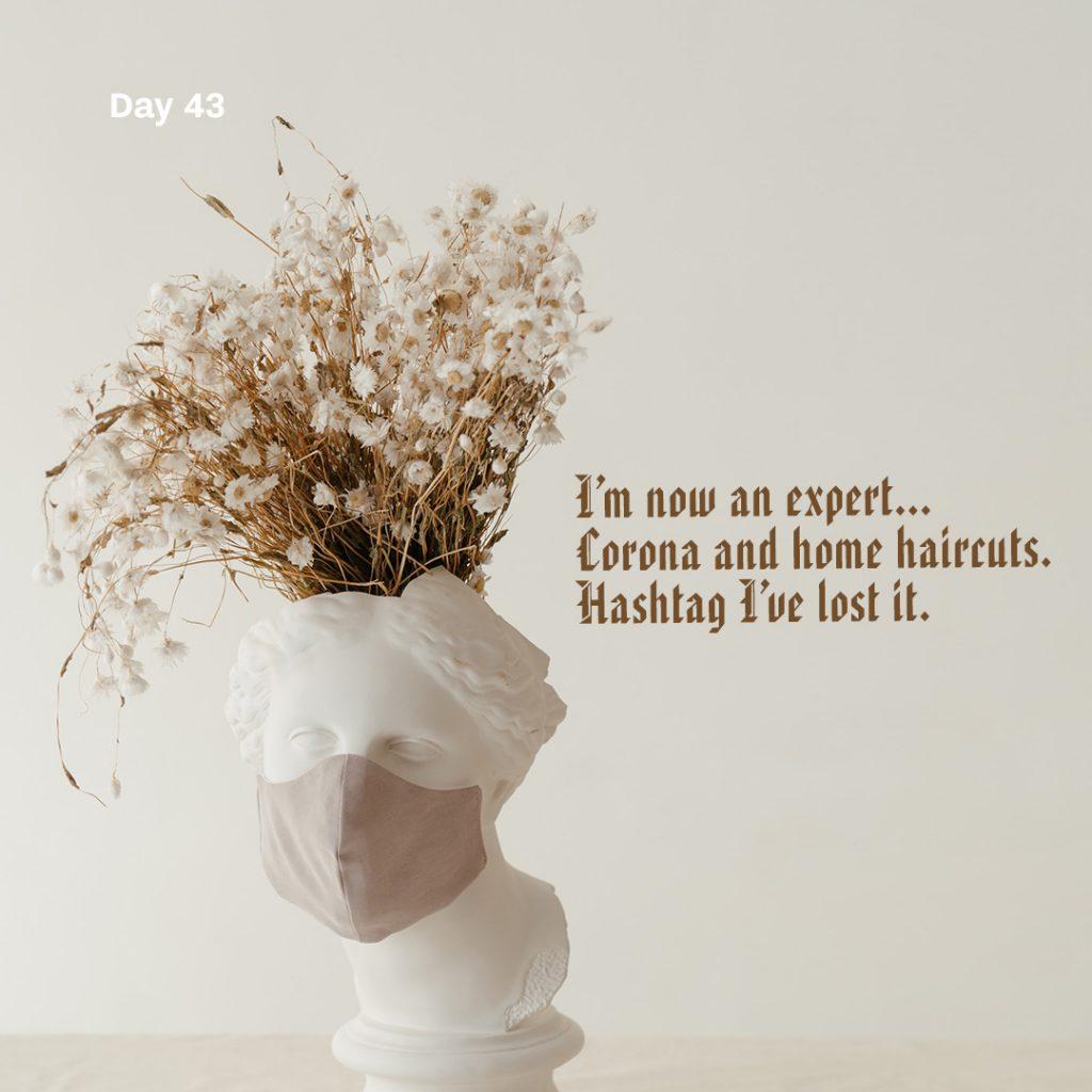 Haiku day 43