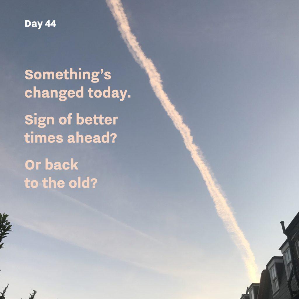 Haiku day 44