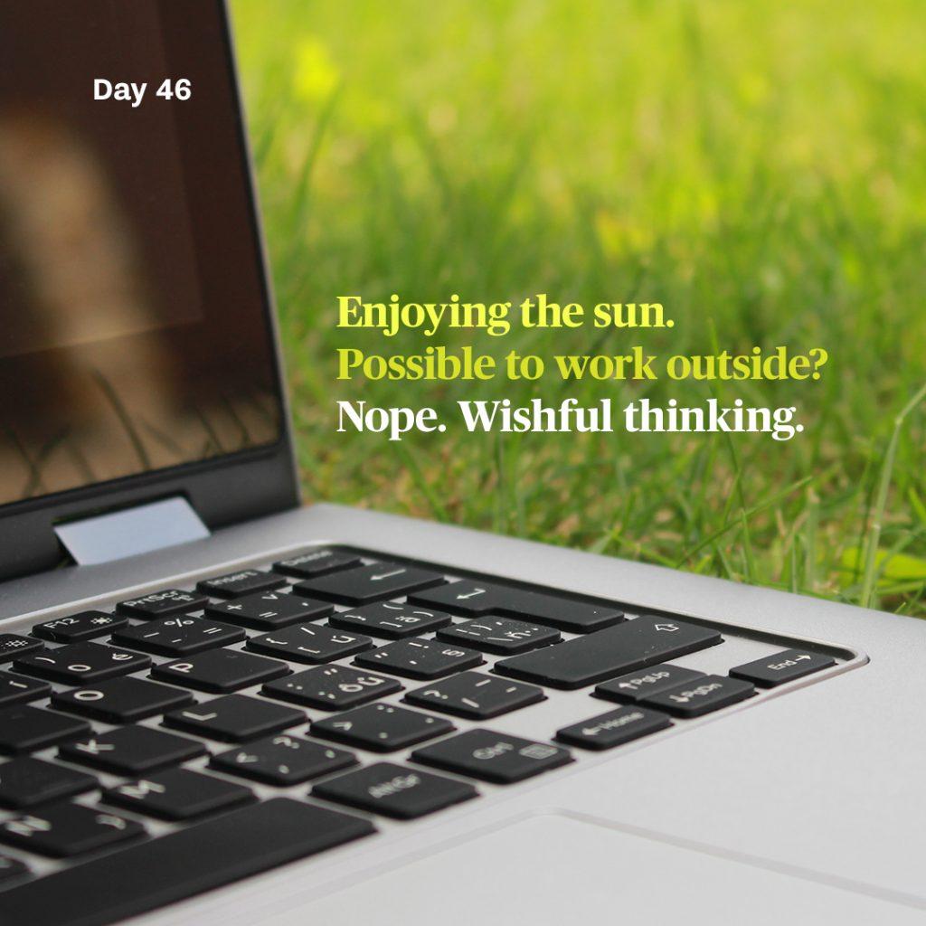 Haiku day 46