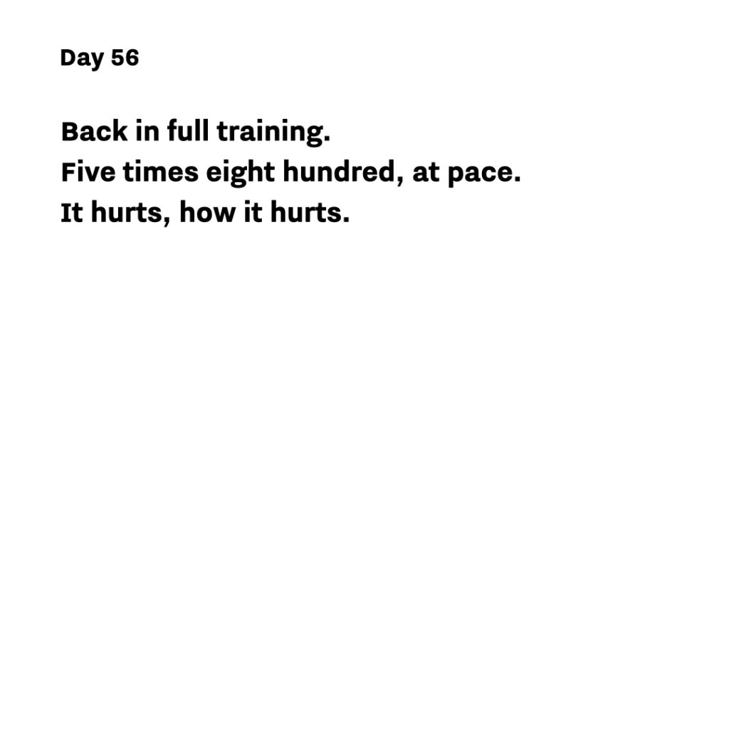 Haiku day 56