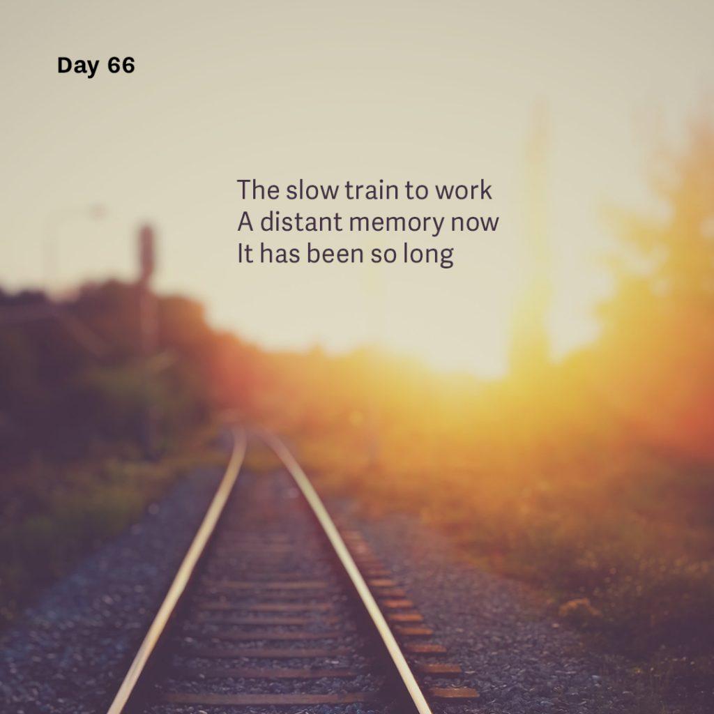 Haiku day 66